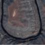 U: a San Juan folyó a Goosenecks Nemzeti Parkban, az egyesült államokbeli Utah államban.